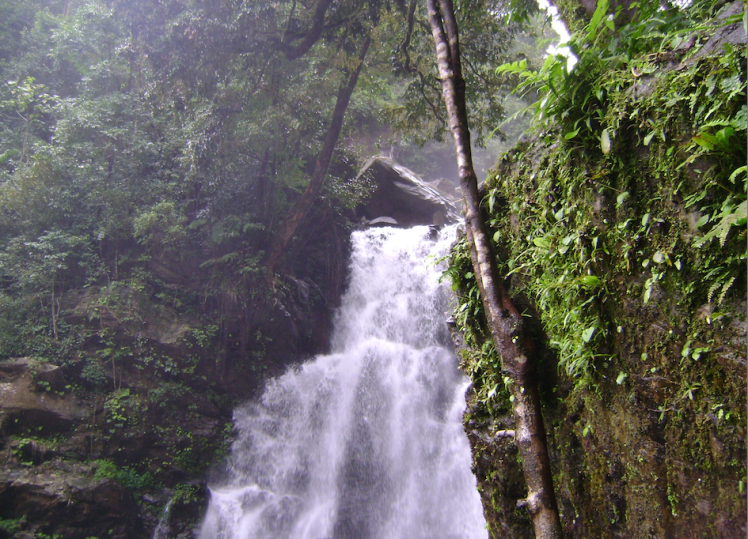 Hanuman gundi water falls.png
