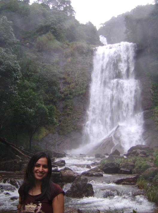 hebbe falls, chikmagalur.png