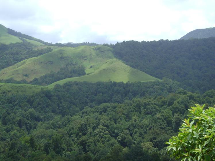 kemangundi hills.png