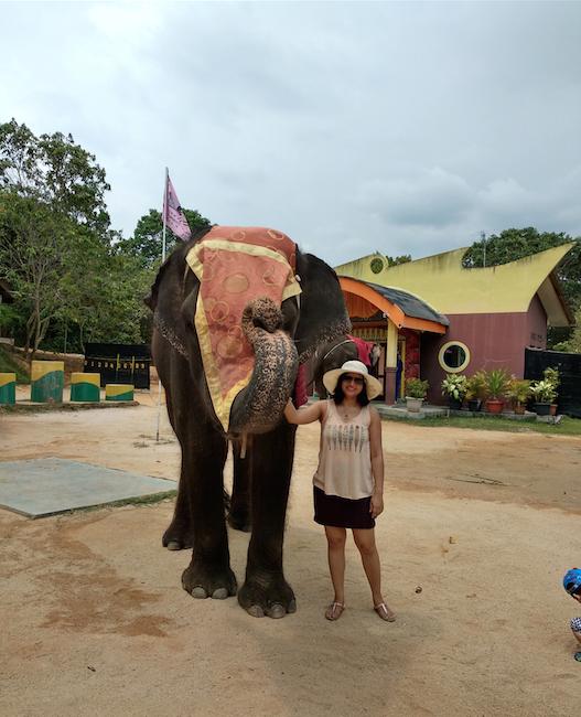 feeding elehants , Nirwana gardens Bintan