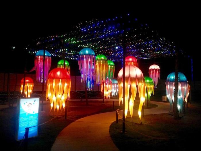 Jelly fish, lanttern park, Lagoi.jpg