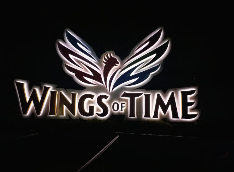 9. Wings of time