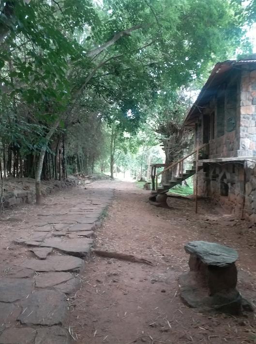 parched road, Jungle retreat Masinagudi.png